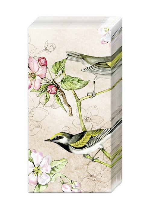 Papiertaschentücher BIRDS SYMPHONY cream