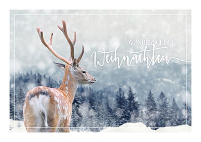 Weihnachtskarte 8915 verschneite Landschaft