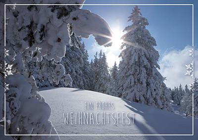 Weihnachtskarte 8839 Landschaft im Schnee