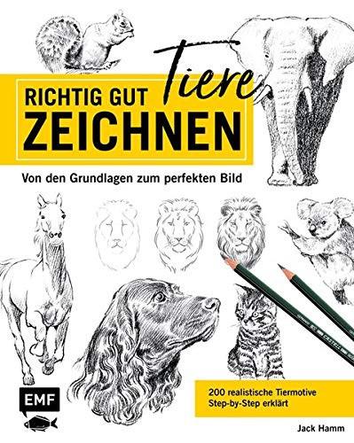 Buch Richtig gut zeichnen Tiere